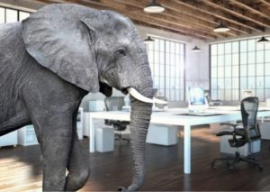The proverbial elephant in the room need to be acknowledged